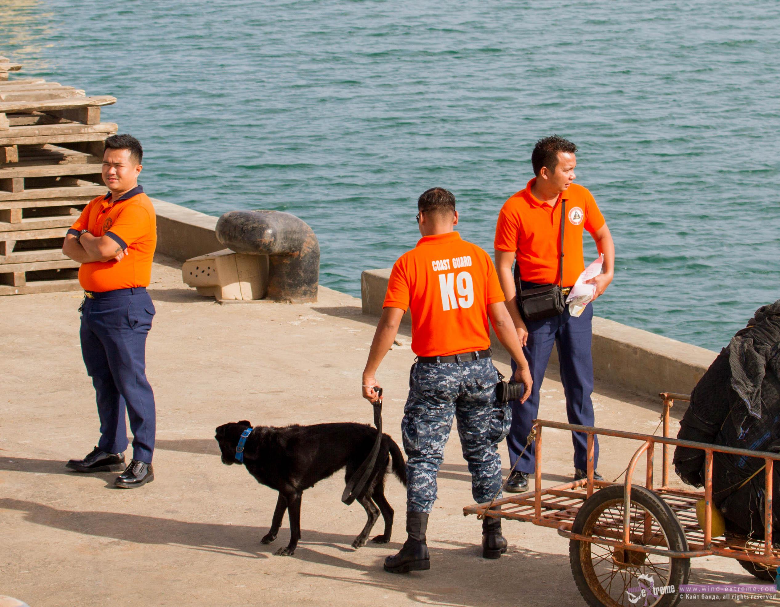 Досмотр парома на остров Куйо собаками К9, кайт школа Wind-Extreme